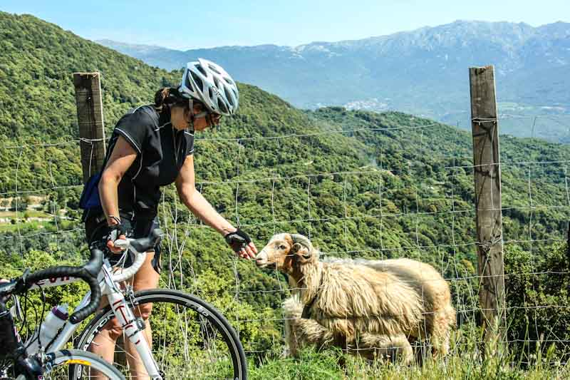 https://bcyclet.com/wp-content/uploads/2020/02/bike-tour-corsica-51.jpg