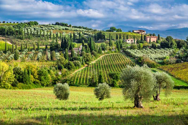 https://bcyclet.com/wp-content/uploads/2020/02/tuscany-bike-tours-bcyclet-31-1.jpg