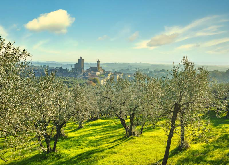 https://bcyclet.com/wp-content/uploads/2020/02/tuscany-bike-tours-bcyclet-49.jpg